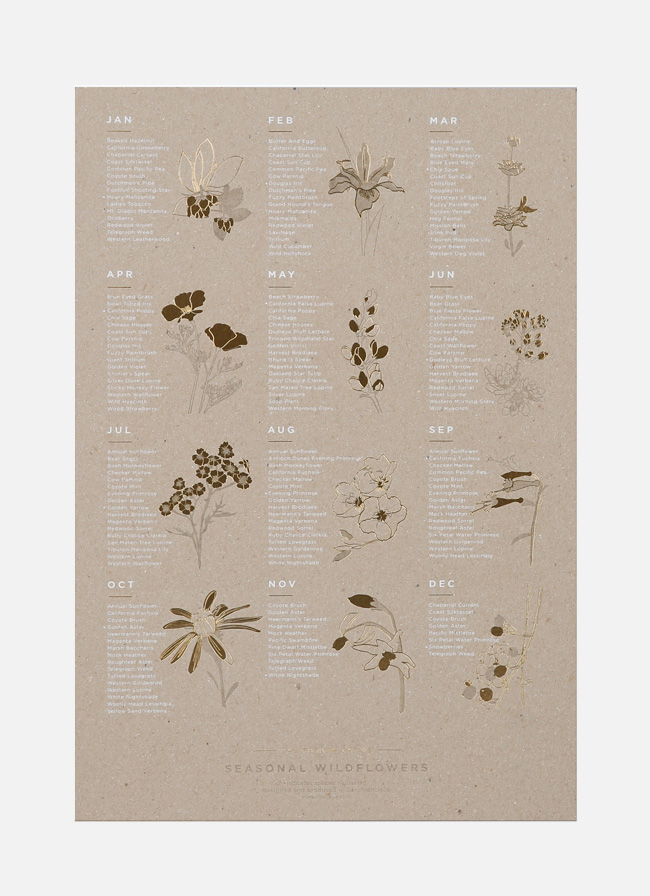 California Native Wildflowers Poster